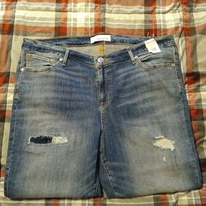 Maurices Distressed SkinnyJeans